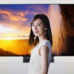 4kテレビSony(ソニー)ブラビアのCMで北川景子が世界の絶景映像を音声で呼び出す!